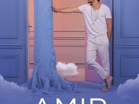 Concert : Amir