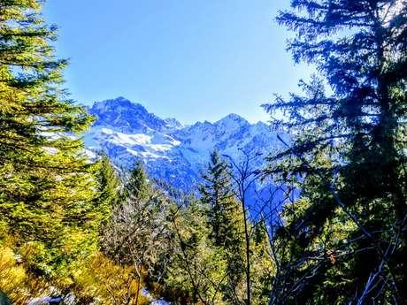 Randonnée Raquette Découverte Hivernale (snowshoeing)