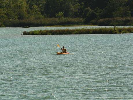 Canoë Kayak : descentes du vieux Rhône - la Petite