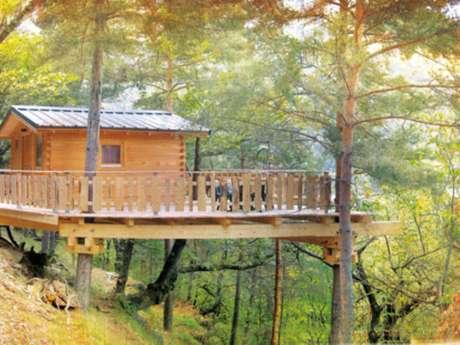 Dormir plus haut : Les maisons dans les arbres