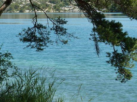 Rando découverte : les criques du lac d'Esparron