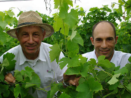 Romain Miramont - Vins St Sardos