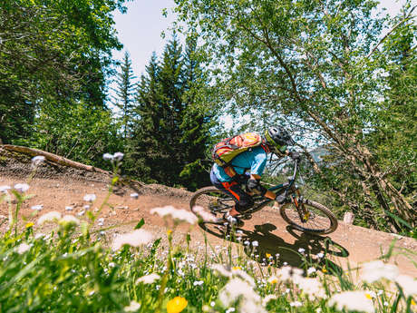 Downhill-Einführung mit Jérôme Caroli