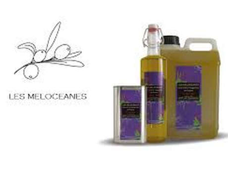 Les Mélocéanes - Thierry Melchio Producteur d'huile d'olive AOP de Provence