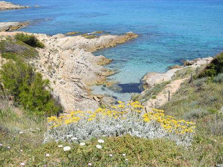 """""""Plage de l'Escalet -Isthme du Cap Taillat"""" - (circuit E) - Sentier du littoral - Ramatuelle"""
