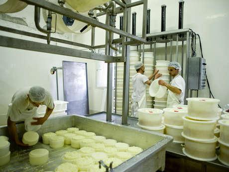 Visite commentée de la Coopérative laitière des Entremonts