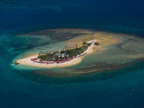 Duck Island excursions - Lyvaï