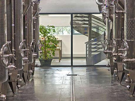 Aureto - Visit of the cellar