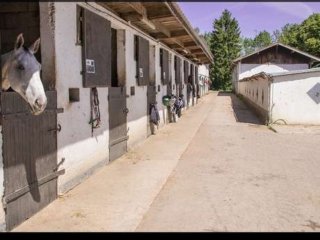 Centre Equestre de la Côte