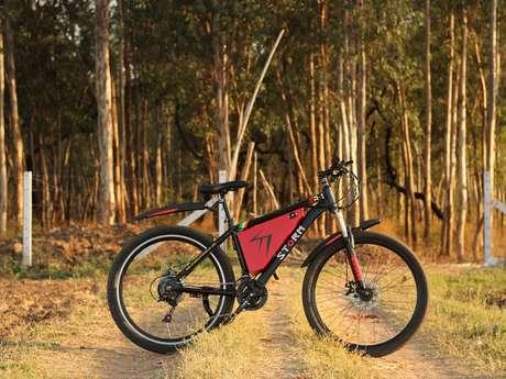 Dombes vélos