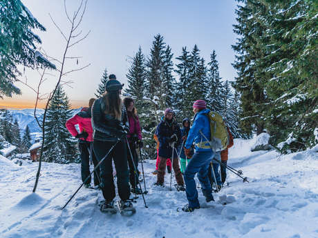 Themed snowshoe trek - The snow