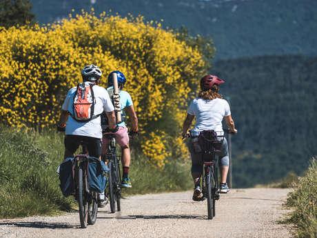 Cycling Around