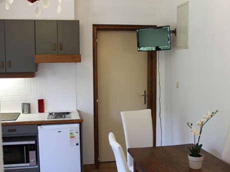 Appartement Gleyzin n°1
