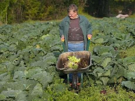 Balade gourmande à la ferme