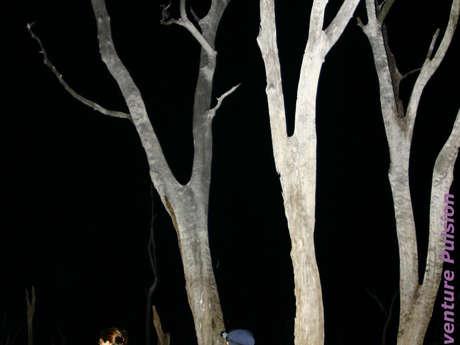 Sortie kayak à la pleine lune dans la Forêt Noyée - Aventure Pulsion