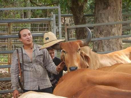 Yala Ranch, balade à cheval à la rivière de Dumbea