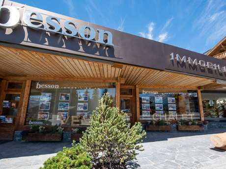 Besson Immobilier SA