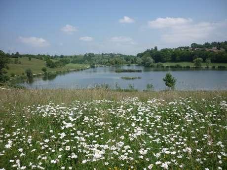 Aire de pique-nique - Lac de Machilly