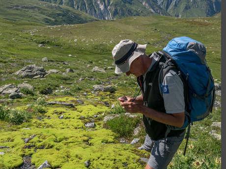 50 nuances de vert - Atelier nature Parc national de la Vanoise