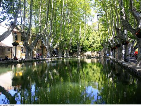 Le Bassin de l'étang