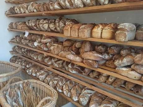Boulangerie Cum Panis
