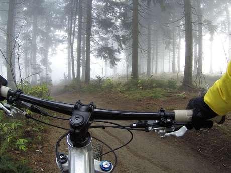 Moniteur cycliste : David Chamignon