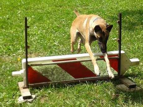 Centre canin Inou