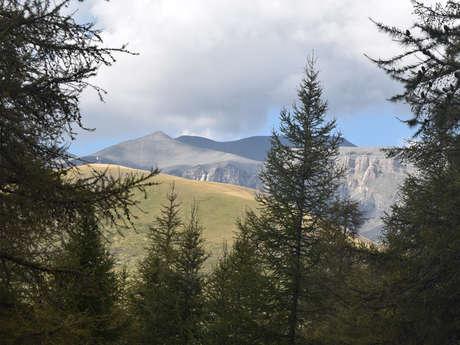Séjour randonnées pédestres écotouristiques - Destination Alpes Azur Mercantour