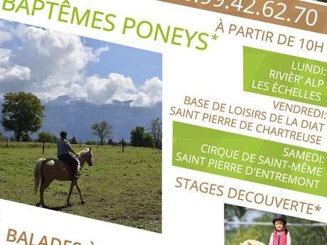 Balades à poneys à la base de loisirs de la Diat