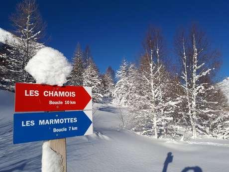 County of La Meije's Nordic Area