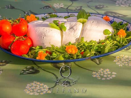 Stefano Forever - Restaurant Arts-Music & Entertainment & snack