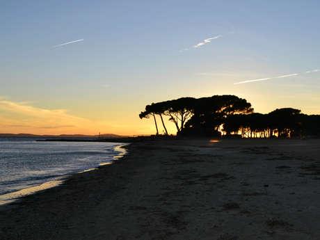 Sentier du littoral  : circuit n°5b - Port Miramar / Les salins d'Hyères