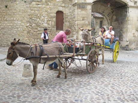 Balades en calèche avec des ânes attelés