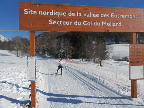 Cours particulier de ski de fond