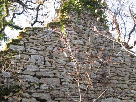 Les crêtes et ruines de Lomont