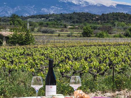 Pique-nique vigneron au Domaine Plein Pagnier