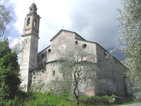 Passeggiata tra gli ulivi a Notre Dame du Mont