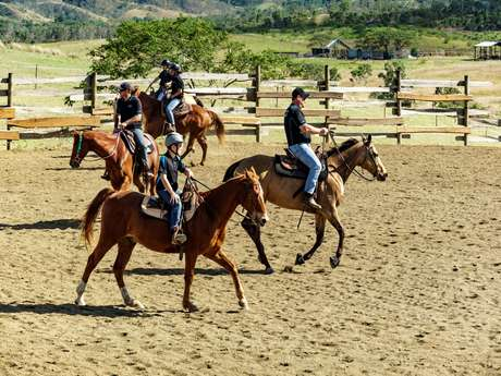 Promenade à cheval 1h - Lasbleiz Western Training