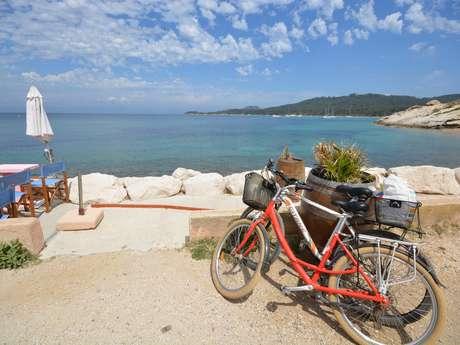 Journée à Porquerolles : bateau + vélo + restaurant