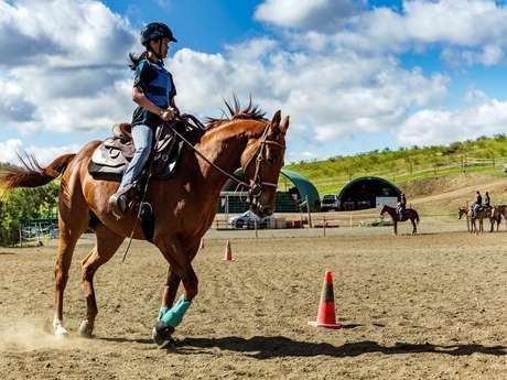 Promenade à cheval 2 h - Lasbleiz Western Training