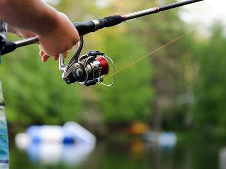 Pêche dans la Chalaronne