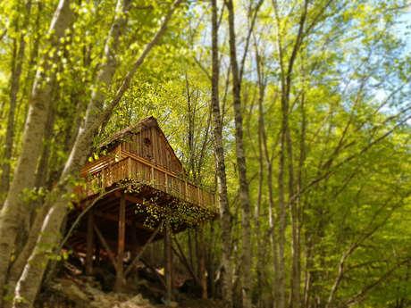 Les cabanes enchantées