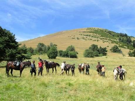 Séjour équestre : Le Parc des Baronnies Provençales avec Les Sabots de Vénus