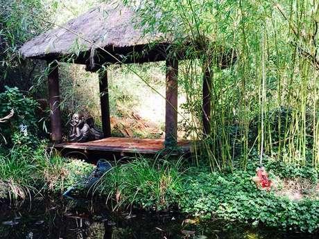 Visite des bambous du Mandarin