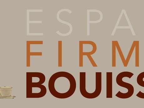 Exposition Firmin Bouisset
