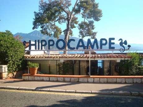 Ristorante L'Hippocampe