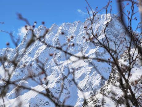 Sortie alpinisme Sirac - Bureau des Guides Champsaur Valgaudemar