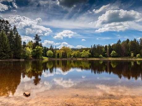 Les étangs de Montalétang