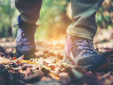 Randonnée pédestre avec Rando Nature - ANNULE