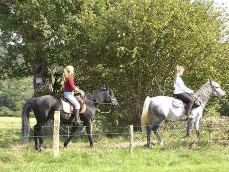 Kinet Horse Farm